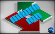 https://ocanal.files.wordpress.com/2010/01/media-dia-2010.png?w=192&h=211&h=120