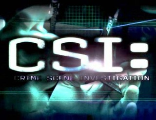 http://ocanal.files.wordpress.com/2011/09/csi_logo.jpg?w=320&h=247